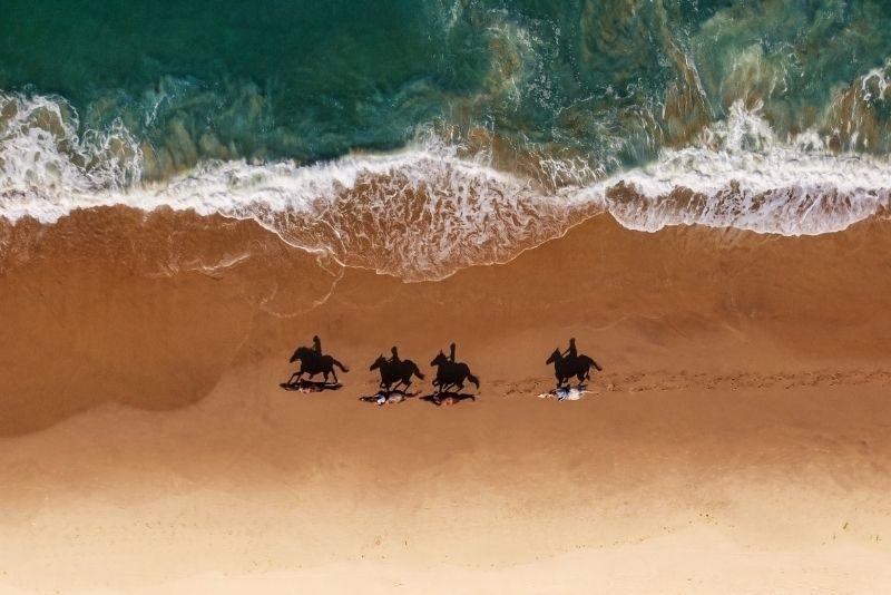 beach horse riding in San Diego, California