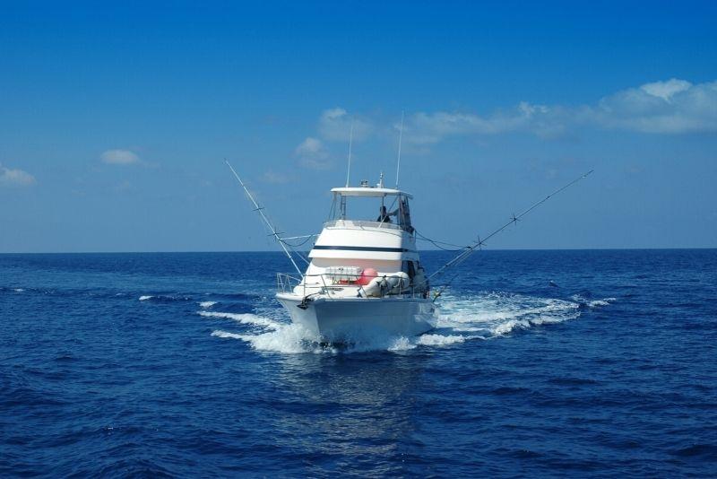 Tour de pesca en alta mar en Miami, Florida