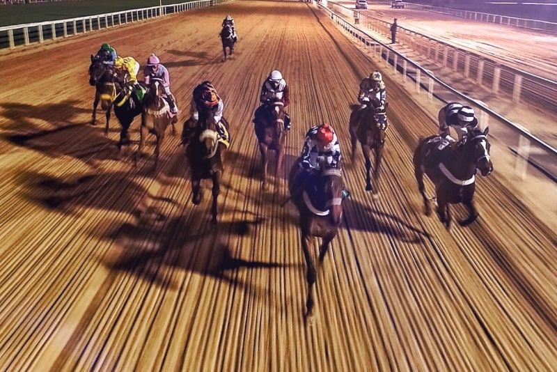horse racing at Del Mar Racetrack in San Diego, California