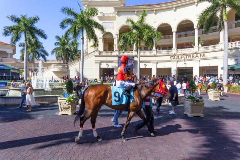 Carreras de caballos en Gulfstream Park, Miami, Florida