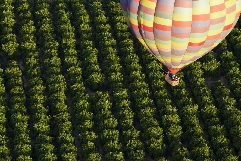 hot air balloon over the vineyards of Temecula, California