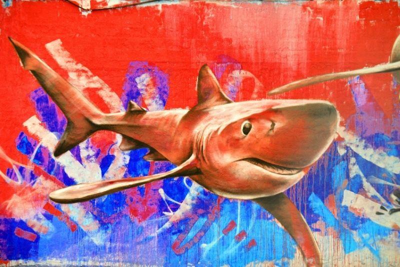 street art tour in San Diego, California