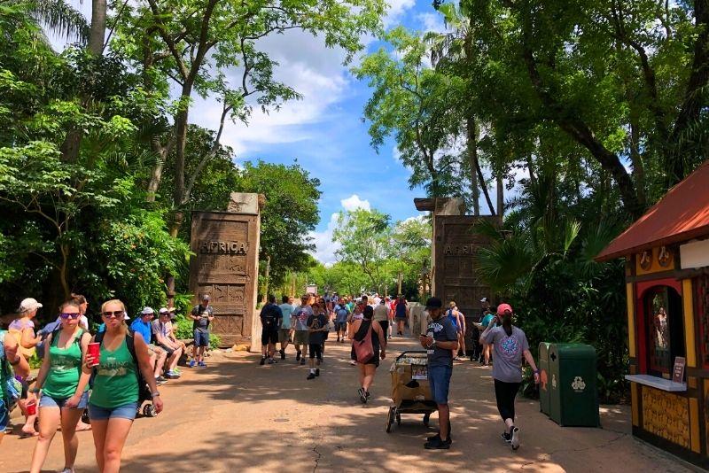 Animal Kingdom, Walt Disney World Resort, Orlando
