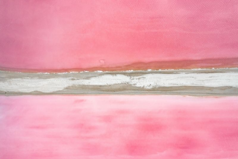 Las Coloradas day trip from Cancun