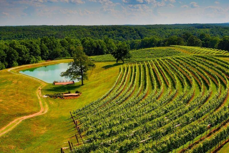 North Georgia wine country near Atlanta