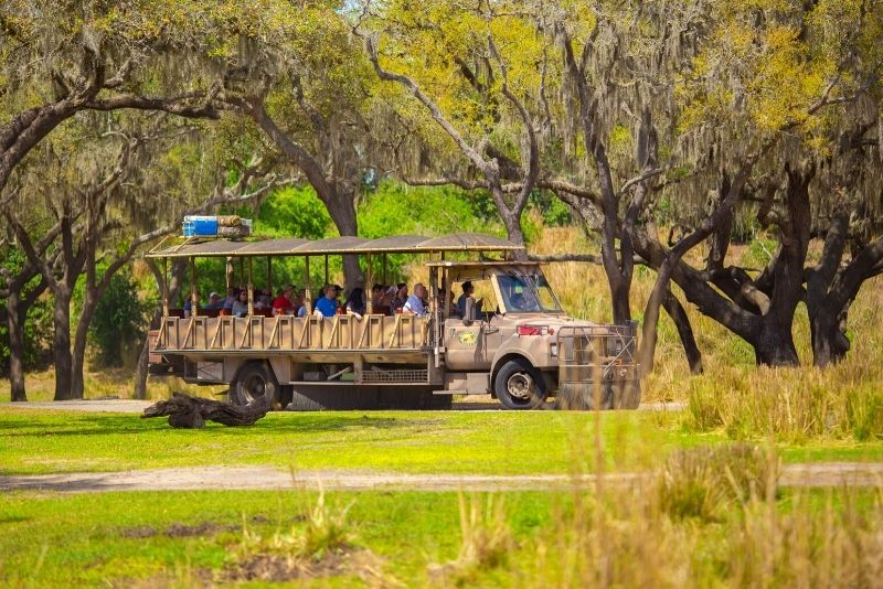 Safari Wilderness, Orlando