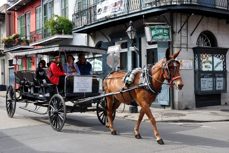 carriage ride through the French Quarter, New Orleans