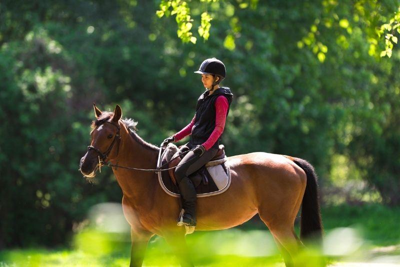 horse riding, Orlando