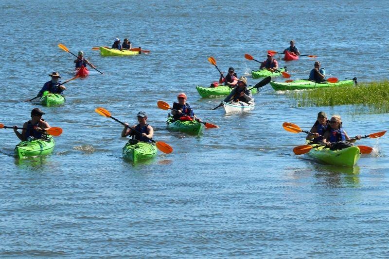 kayak tour in Charleston