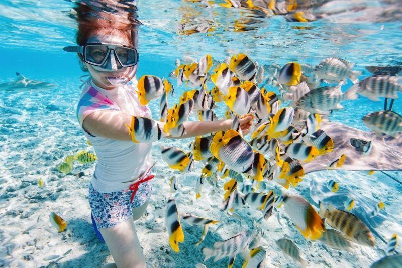snorkeling trip, Key West, Florida