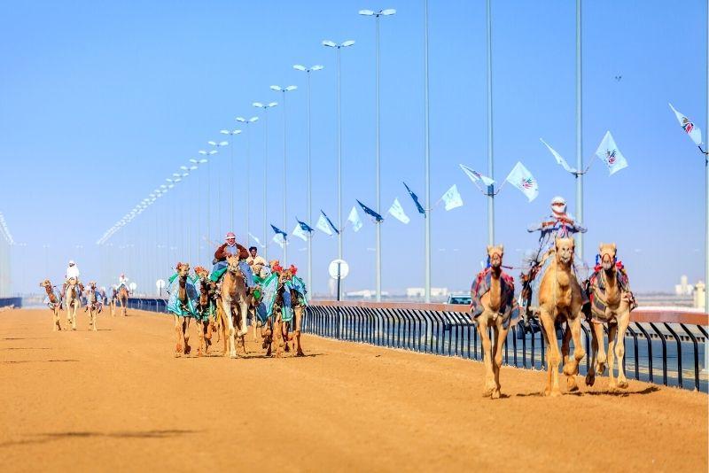 Pista de carreras de camellos Al Marmoom, Dubái