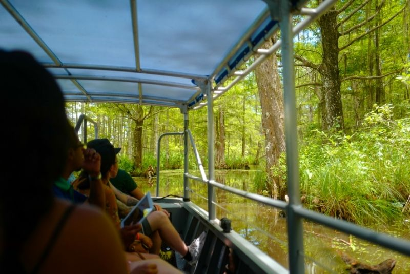 Honey Island Swamp Private Tour