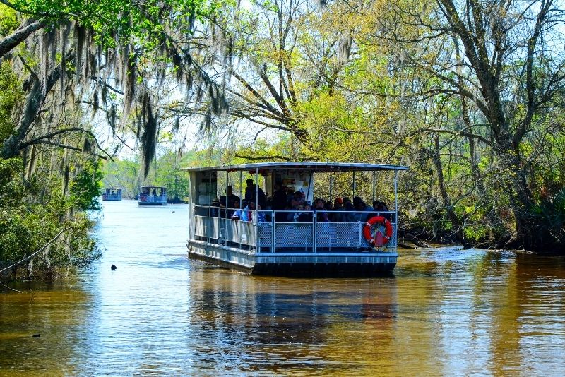 Jean Lafitte Swamp and Bayou Tour