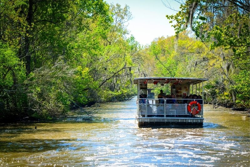 Louisiana Bayous 2-Hour Swamp Tour