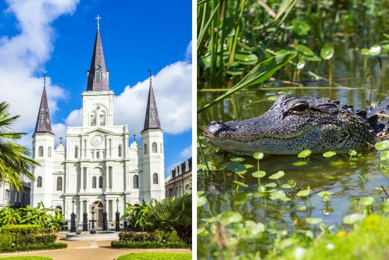 New Orleans City Tour and Swamp Boat Tour