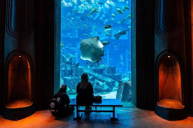 Das Aquarium der verlorenen Kammern, Dubai