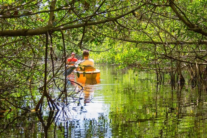 Whitney Plantation and Manchac Swamp Kayak Tour Combo