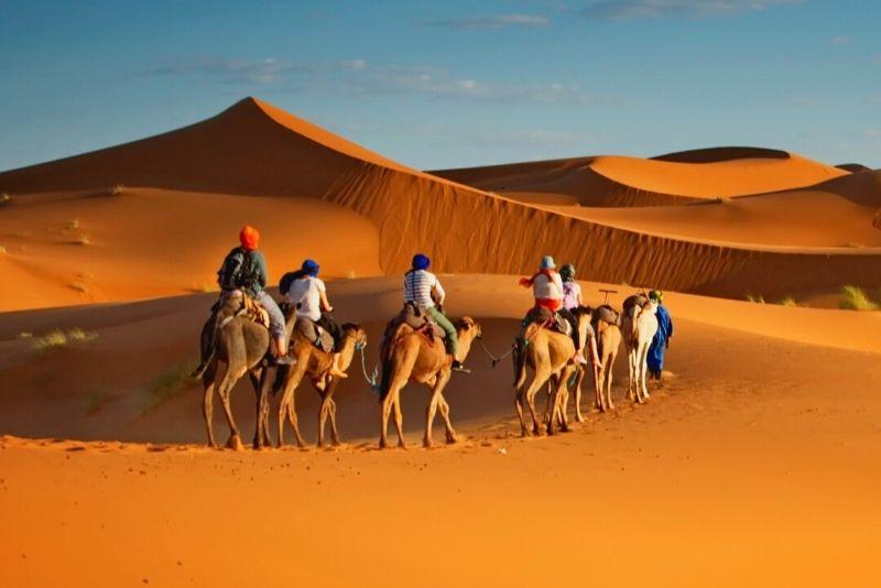 Kamelreiten in Dubai