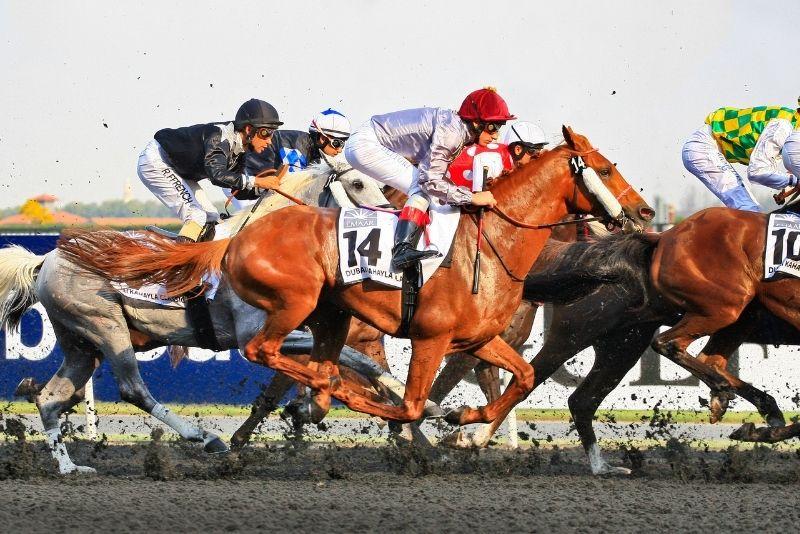 Pferderennen in Dubai
