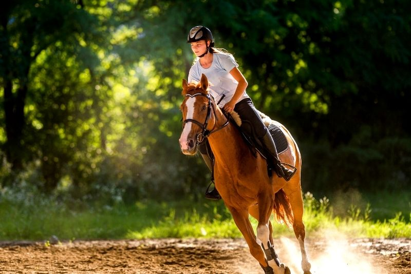 horse riding near Pigeon Forge