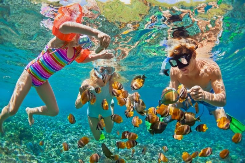 snorkeling a Gran Canaria