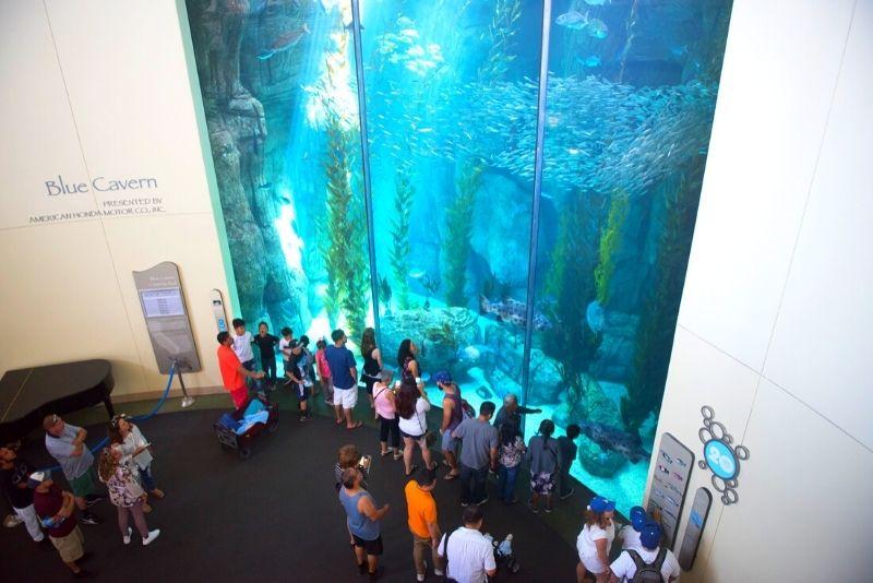 Aquarium of the Pacific, Los Angeles