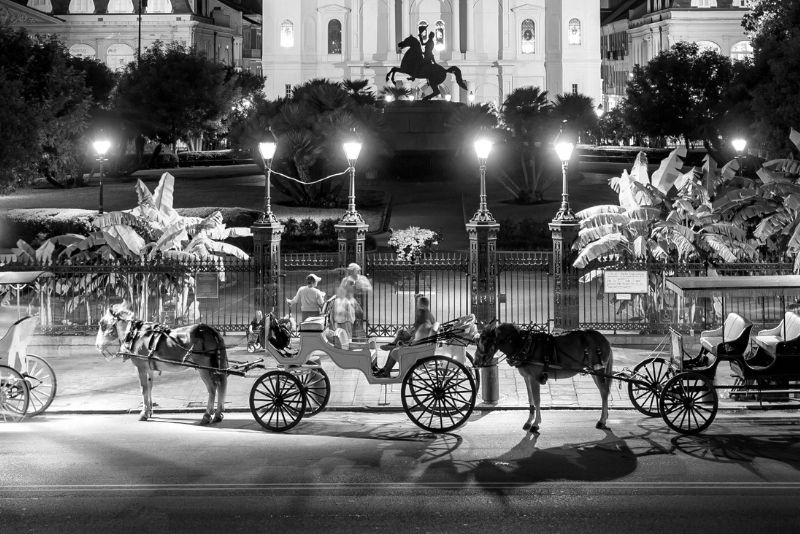 French Quarter Ghost Tour by Mule Drawn Carriage