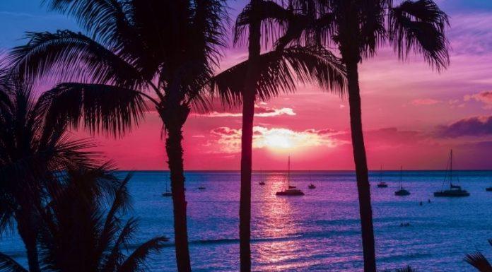 fun things to do in Maui. Hawaii