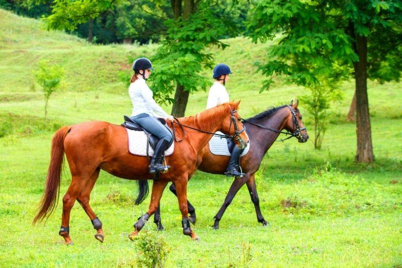horse riding near Cairns