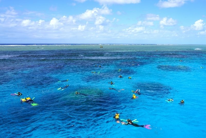 snorkeling at Agincourt Reef