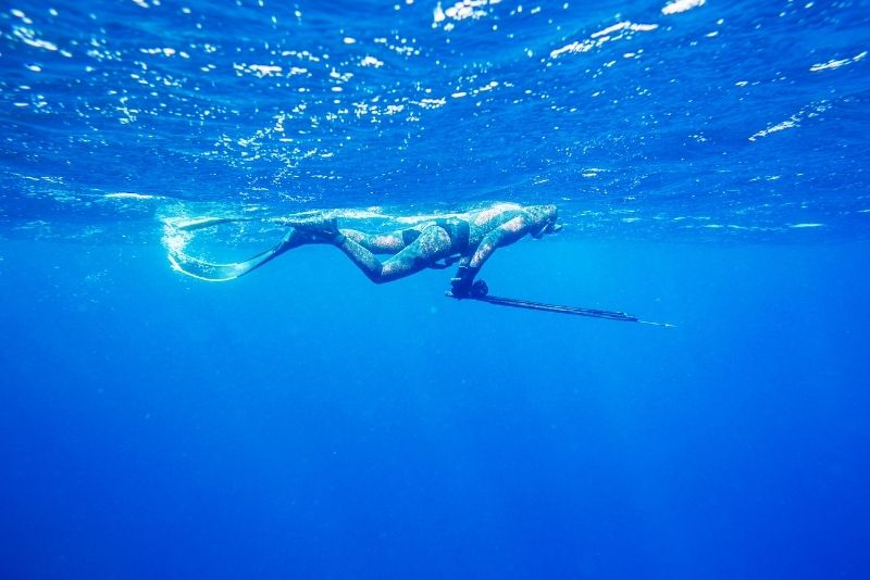 spearfishing in Maui