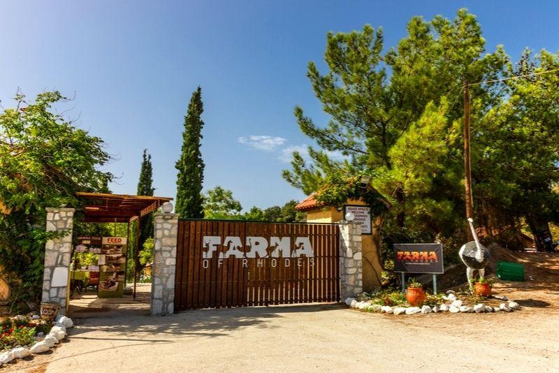 Farma of Rhodes