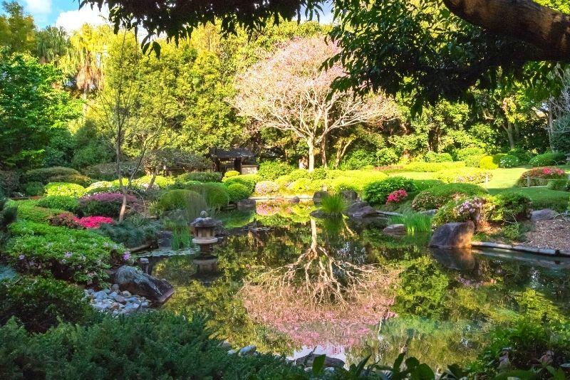 Mount Coot-Tha Botanical Gardens