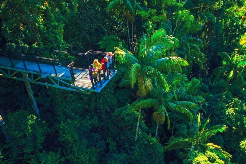 Mount Tamborine Rainforest Skywalk