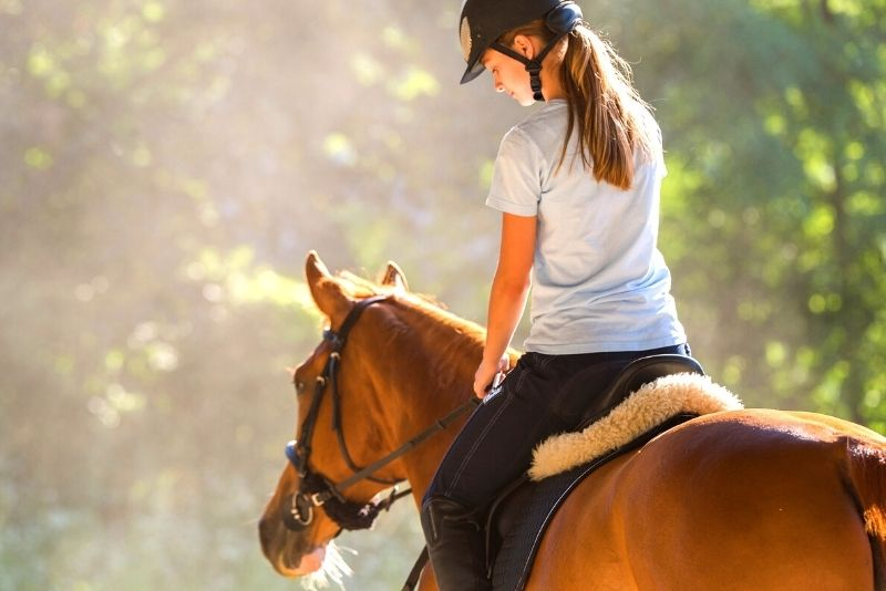 horse riding in Perth