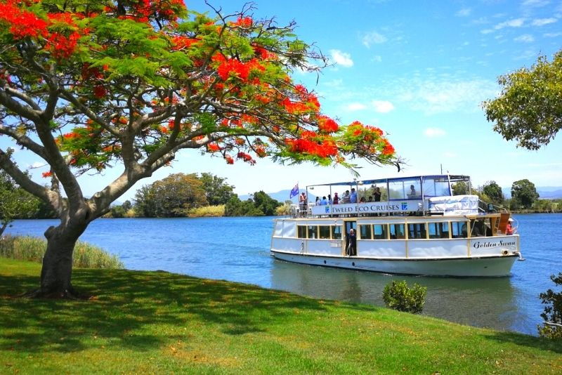rainforest cruise from Gold Coast