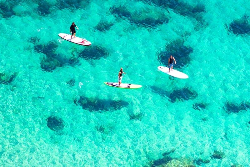 stand up paddle in Gold Coast