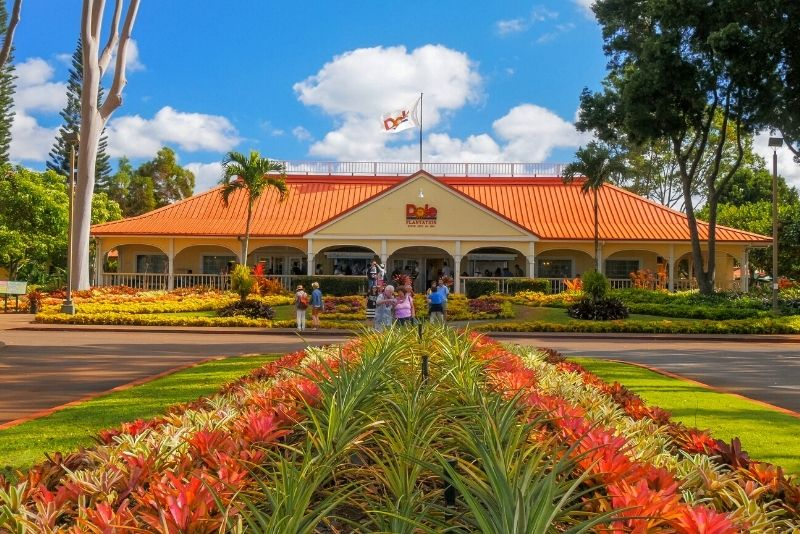 Dole Pineapple Plantation, Oahu, Hawaii