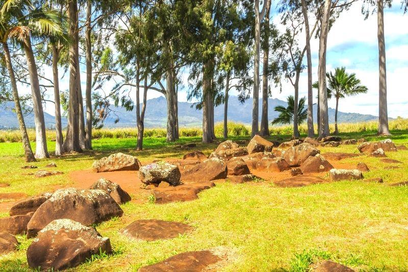 Kukaniloko Birth Stones, Oahu, Hawaii