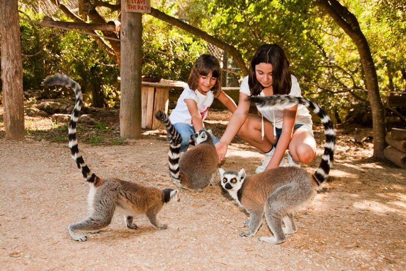 Ort des Menorca Zoos