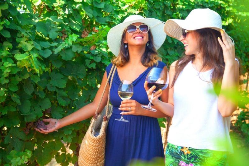 Weintour durch Ribera del Duero