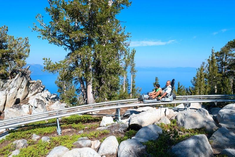 Ridge Rider Mountain Coaster