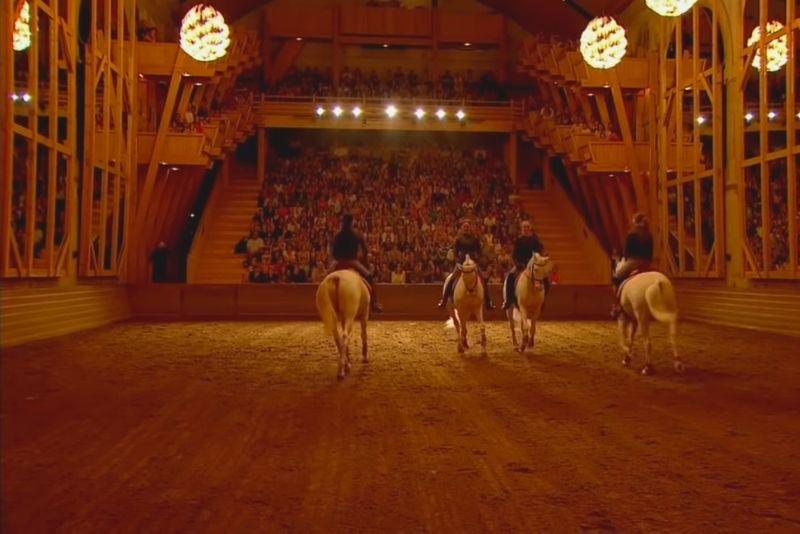Académie des arts équestres de Versailles