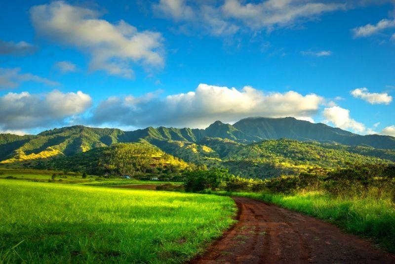 farm tour in Oahu