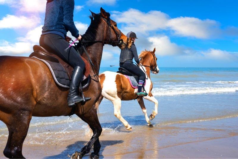 horse riding in Lisbon