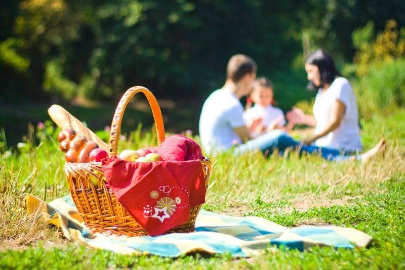 Picknick in Madrid
