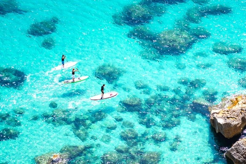 stand up paddle in Oahu