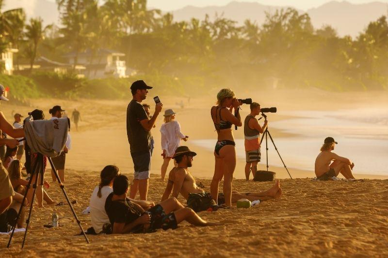 surf competition, Oahu, Hawaii