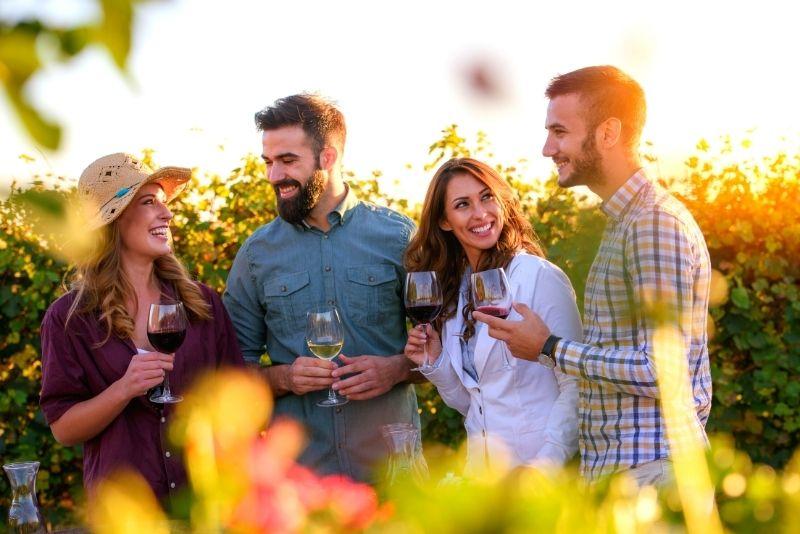 wine tasting in the Frascati region