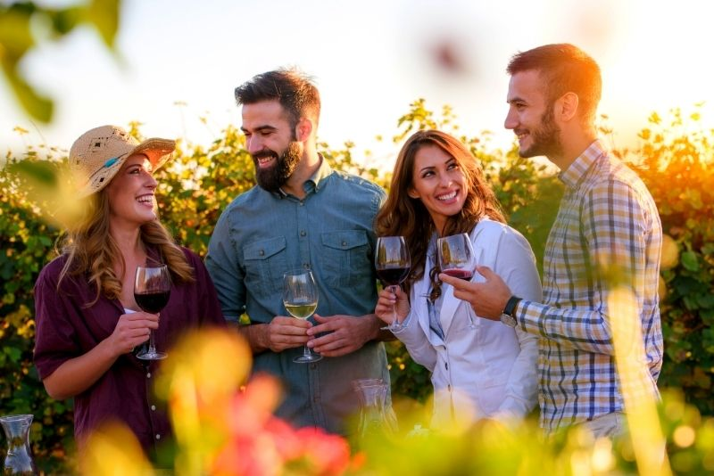 wine tour from Lisbon